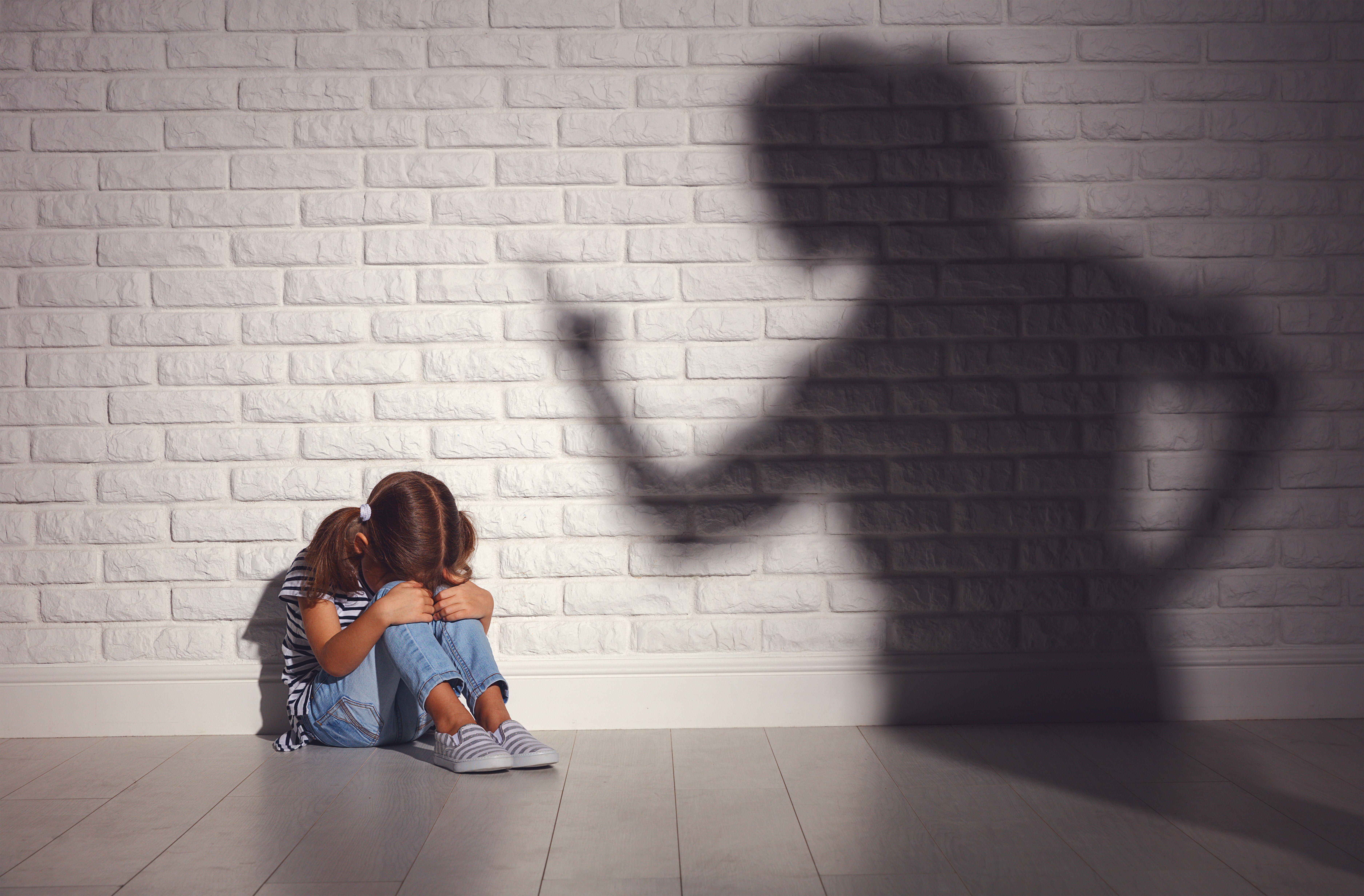 Loi contre les violences éducatives ordinaires